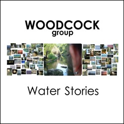 Woodcock Group Cover